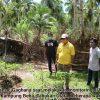 Giat Pertanian Digenjot, Bupati: Stok Pangan Lokal Aman Warga Jangan Panik