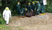 Sempat Ditolak Warga dan Molor 8 Jam, Jenazah PDP Tetap Dimakamkan di Kelurahan Pananekeng